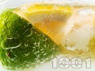Рецепта Коктейл Джин Физ (Gin Fizz)